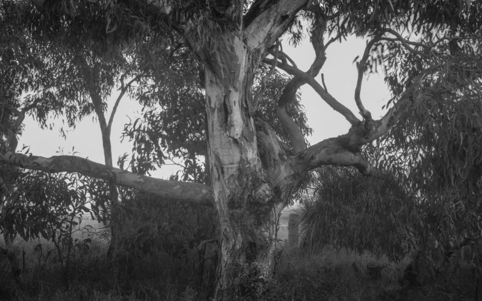 Baum Rd, Waitpinga