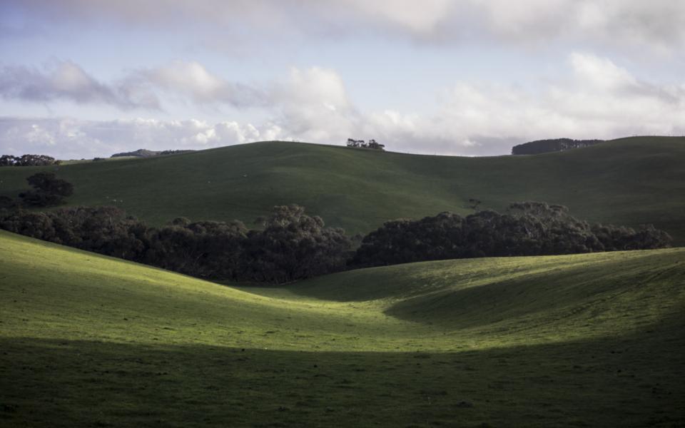 winter landscape, Waitpinga